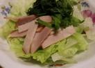 シソの消費に☆簡単サラダ