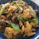 焼肉のタレで簡単豚肉と長ネギ卵の炒め物