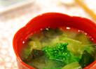 春の香り❀菜の花*春キャベツのお味噌汁