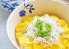 朝食ランチに♫ふわふわ卵としらすの丼ぶり