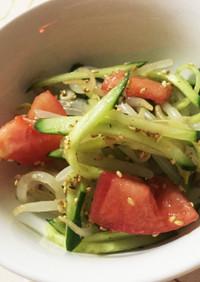 もやしときゅうりとトマトの中華風サラダ