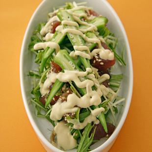 づけまぐろと水菜のしゃきっとサラダ