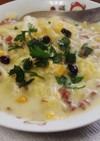 冷凍ごはんのアレンジ:酵素玄米+スープ