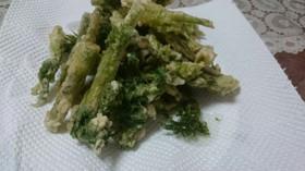 春5番目の山菜・シャクの天ぷら