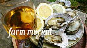 農園レシピ・焼き牡蠣のレモンかけ
