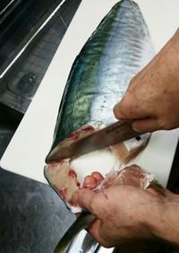 マグロ漁師流簡単ブリ捌き方から刺身