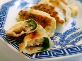 鶏肉と豆腐の餃子