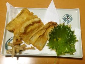 シロアナゴの天ぷら