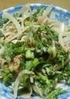 糖質制限!春菊と新玉ねぎのツナマヨサラダ