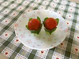 お弁当に♪桔梗キュウリonプチトマト