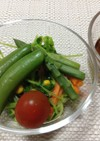 学校給食アレンジ春野菜たっぷりサラダ