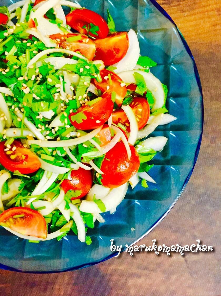 パクチーとトマトと玉ねぎの黒酢サラダ