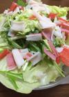 簡単テキトー☆レタス水菜キャベツのサラダ