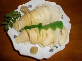 竹の子の刺身