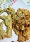 ウドの穂先の天ぷらと皮のかき揚げ