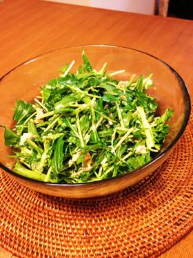 モリモリ!簡単水菜とツナの塩こぶサラダ♪
