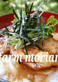 農園レシピ・新たまと鶏の照り焼きどん♪