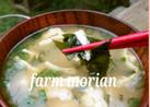 農園レシピ・ワカメと豆腐のお味噌汁