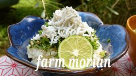 農園レシピ・かまあげしらす丼