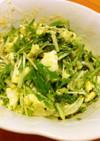 水菜、新玉葱、卵のサラダ