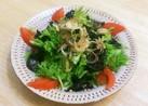 レタスと海苔の和風サラダ