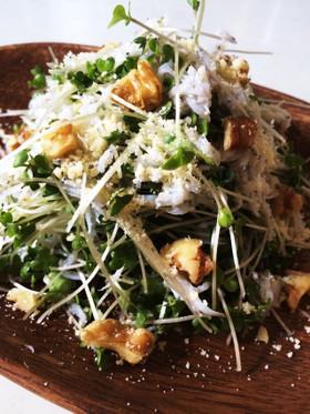 *ブロッコリースプラウト・しらすのサラダ