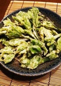 季節の味!山菜☆こしあぶらの天ぷら♪