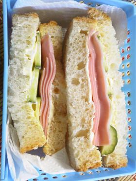お弁当にハムときゅうりのサンドイッチ