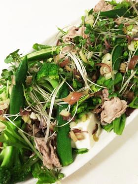 豆腐入り豚☆冷しゃぶサラダ