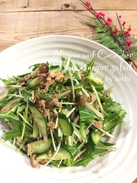 水菜ときゅうりのツナポン酢サラダ