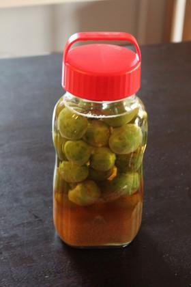 オリゴ糖使用!リンゴ酢たっぷり梅ジュース