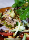 蒸し鶏と茄子のスパイシーサラダ