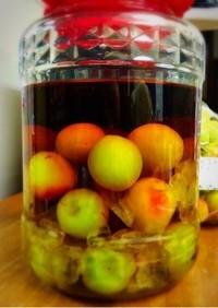 基本の梅酒♡ 作り方