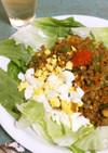 お豆腐と合挽き肉のヘルシー・ドライカレー