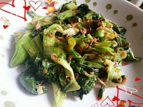 チンゲン菜と桜エビの中華炒め