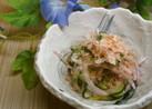 胡瓜と紫玉ねぎ(玉ねぎ)のさっぱりサラダ