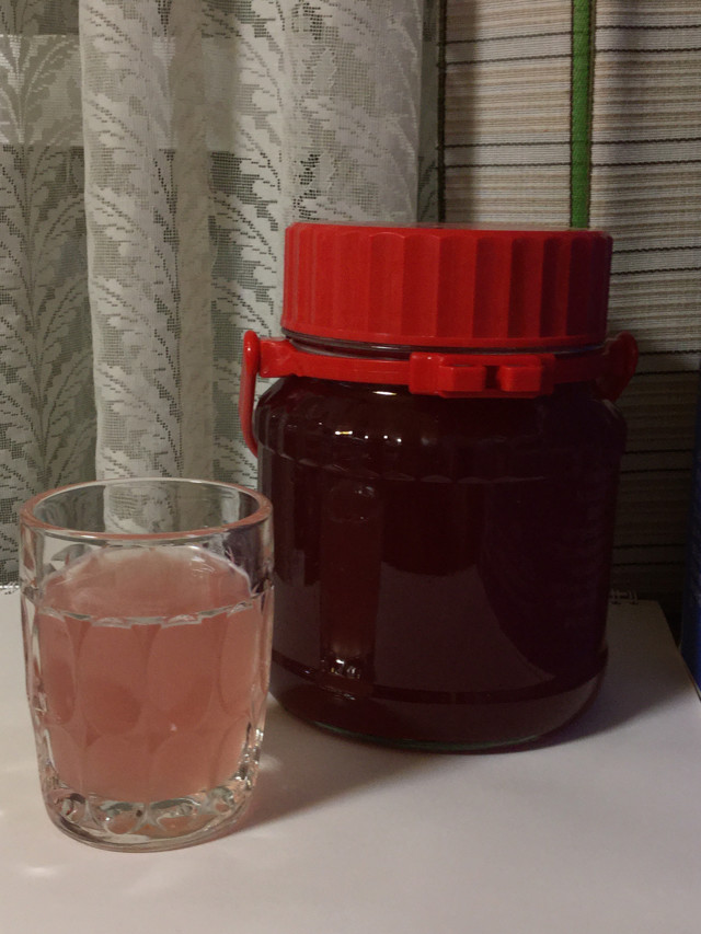 夏☆梅酵素ジュース2015
