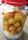 ズボラでセッカチが作る完熟梅の梅酒