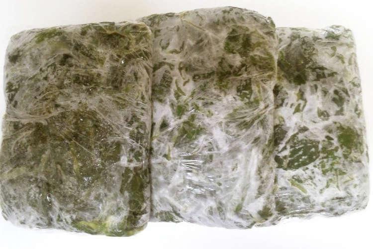 保存 方法 モロヘイヤ