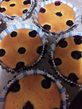 茨城県産のブルーベリー入りケーキ