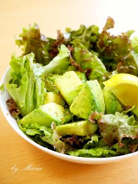 アボカドとレタスのシンプルサラダ