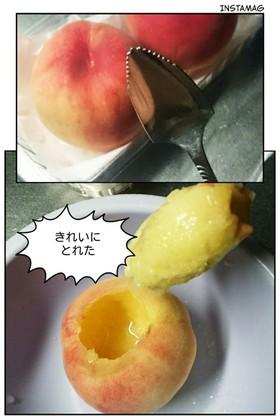 桃の種のとりかた