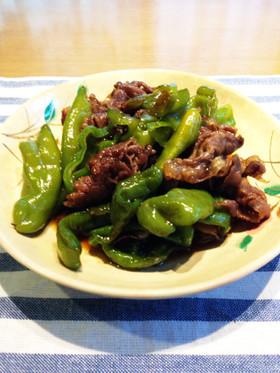 万願寺唐辛子と牛肉の甘辛煮