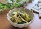 胡瓜とキャベツのやみつきサラダ