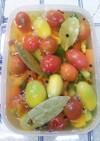 プチトマト入りカラフル野菜のピクルス