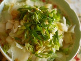 超簡単!白菜と長葱のあつあつごま油サラダ