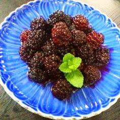 【簡単で美味しいブラックベリーの食べ方】