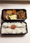 【弁当男子】セロリのもやし肉味噌炒めと鮭