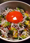 アボカドとシラスの醤油卵黄丼