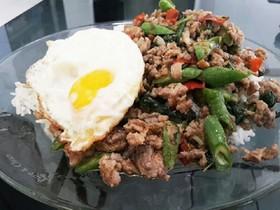 本格タイ料理ガパオライス基本素材